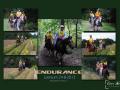 raamwerk-endurance-5-png