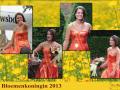 a2-poster-bloemenkoningin-2013-1a-nieuw-logo-png