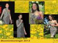 a2-poster-bloemenkoningin-2013-nieuw-logo-png
