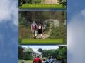 raamposters-2013-wandeling-darthuizerpoort-1-png